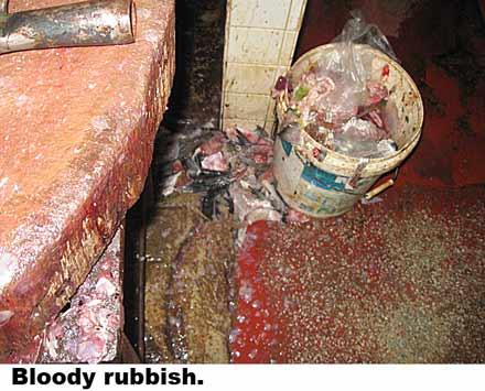 bloody-rubbish