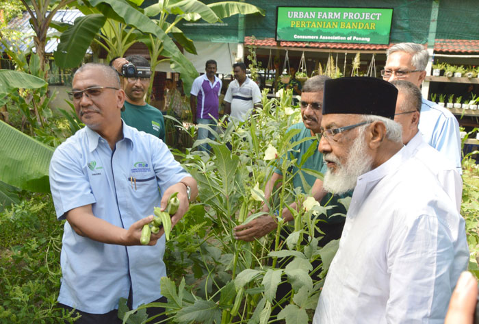Chemical-Free Sustainable Farming is the Way Forward - Consumers