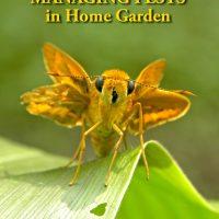Managing Pests in Home Garden