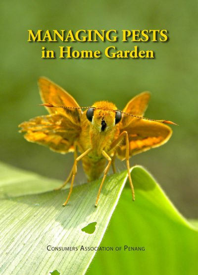 Managing Pests in Home Garden
